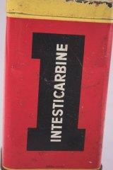 Intesti5
