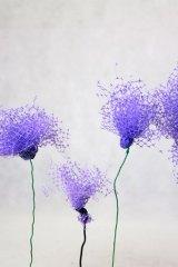 Fleurmauvefilet01