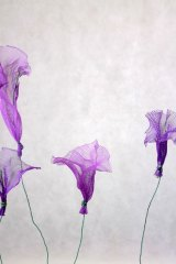 Fleurparmefilet01