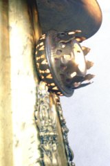 angele-riguidel-Poulpus