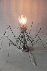 Spiderglasp1