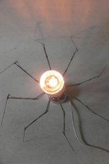 Spiderglasz